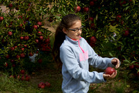 Apple Picking and Picnic_Sep272015_3128